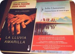 Literatura. Julio Llamazares. Fotografía: Histórica Cultura